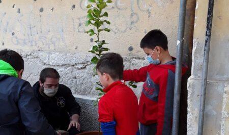 Palermo. Aveva subito un furto di fiori, la scuola Rita Atria riceve due alberi dal centro Muni  Gyana